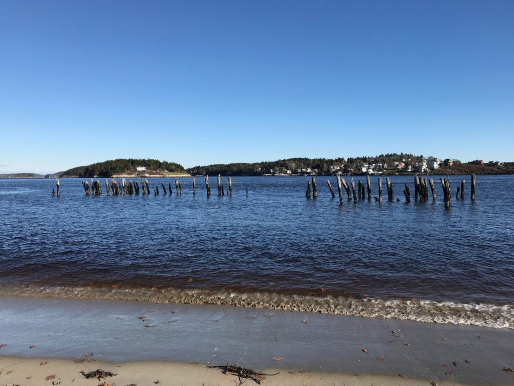 A plan to remove these pilings in Popham will go before the Maine Board of Environmental Protection Dec. 7.
