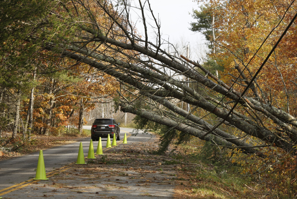 A vehicle travels under fallen trees along Flying Point Road in Freeport on Nov. 3. Central Maine Power officials say the utility was as ready as it could have been for the storm, which caused far more damage than expected.