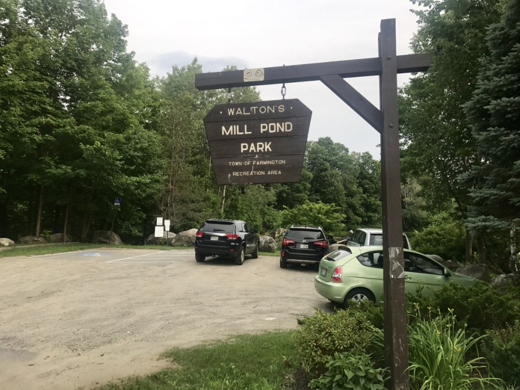 A $1.2 million project that won Farmington selectmen's approval Tuesday night would include removal of the Walton's Mill Dam and upgrading a surrounding public park, seen Tuesday. Now the plan is expected to be submitted to town voters in a referendum, probably in November.