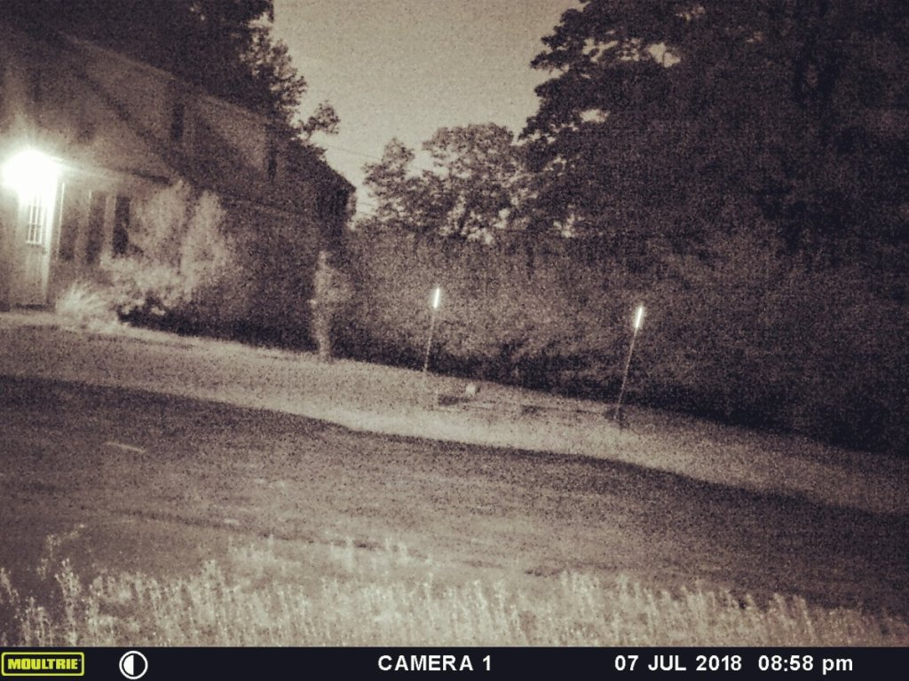 This lightened image was caught on Tia Wilson's motion-triggered game camera on Saturday night outside her Durham home. It appears to show a man with a rucksack standing near her front door. He is in one frame, but missing from the next frame taken by the camera 10 seconds later.