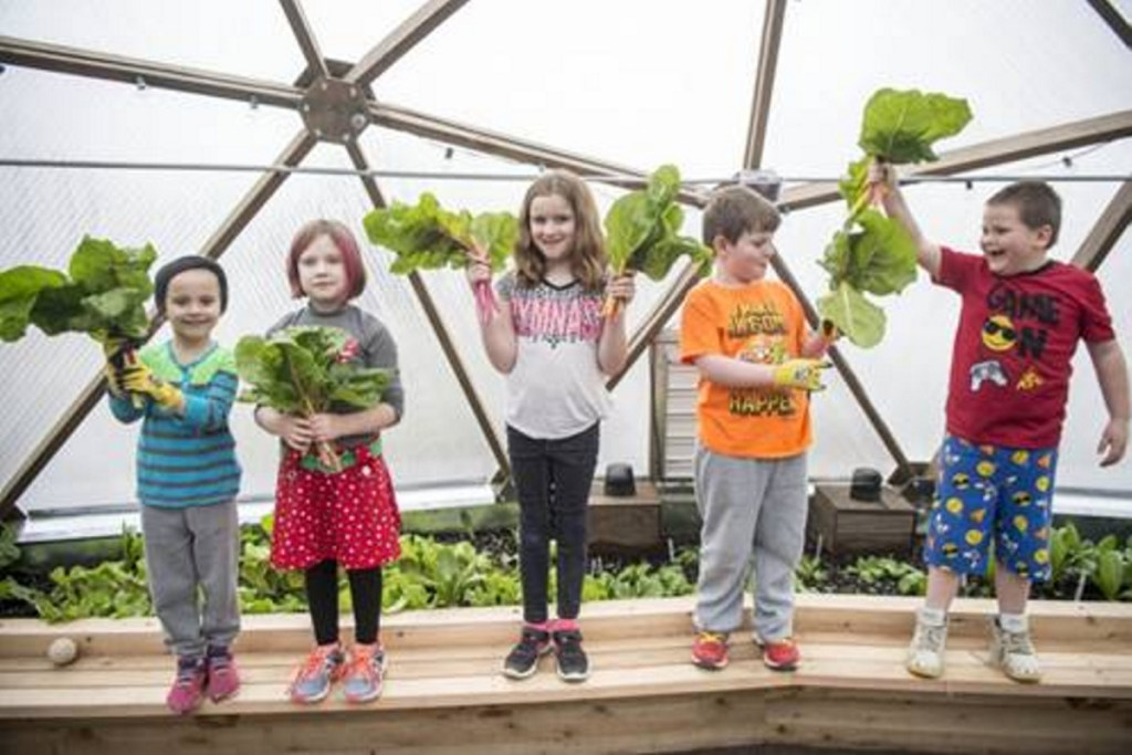 Garden to Table program participants, from left, Emma Gallagher, 6, Lahla Brann, 7, Emma Chaput, 8, Anderson Phinney, 8, and Xavier Bernardini, 7. The children show off their freshly cut chard, which they grew in the new geodesic dome greenhouse at the Alfond Youth Center in Waterville.