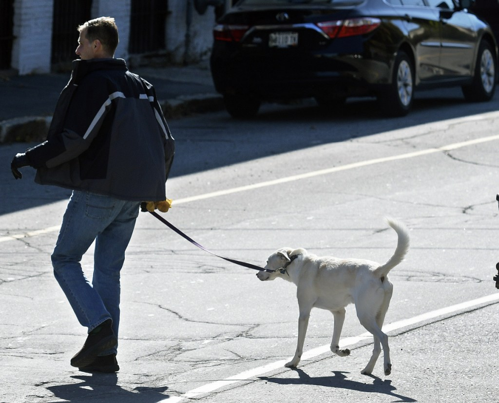 Russell Cate, of Augusta, walks his dog, Artemis, on Friday in Augusta. Cynthia Roodman, who was attacked by two dogs in July, is working to submit legislation for the next session of the Legislature to impose criminal penalties against dog owners whose animals attack people and who leave the scene without helping the victim.
