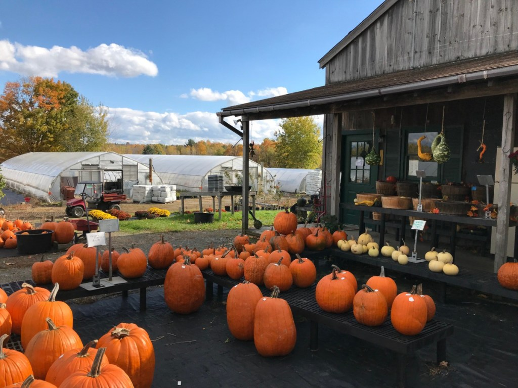 """Richard Freeman, who owns Hilltop Farm and Greenhouses on Middle Road, doesn't expect Fairfield's proposed food sovereignty ordinance to affect his business, but said the concept of food sovereignty is """"something I would definitely support."""""""
