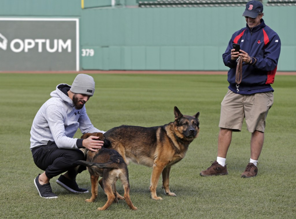Red Sox pitcher Rick Porcello, left, plays with his 4-month-old puppy, Bronco. The Red Sox are preparing for Game 1 of the baseball World Series against the Dodgers scheduled for Tuesday night in Boston.