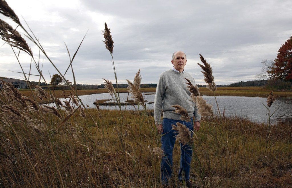 """Marvin Gates, a resident of Black Point Road in Scarborough, is among the people opposed to a proposal to erect a cell tower near the Scarborough Marsh. """"Scarborough Marsh is one of the most incredible places,"""" he says."""