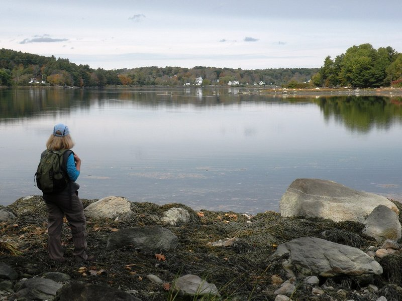 The Great Salt Bay Farm is a lovely 100-acre preserve of rolling fields, salt and freshwater marshes, woods and a mile of water frontage that makes a visit to the Upper Damariscotta River Region so rewarding.