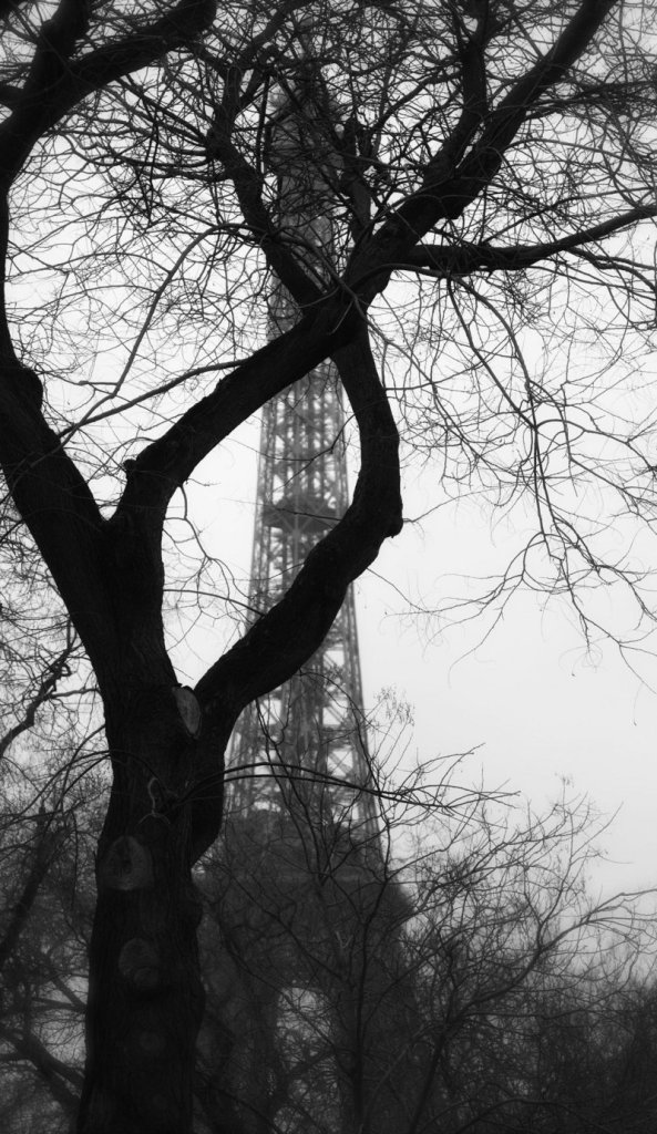 """""""Eiffel Tower #21 from """"Visual Whispers"""" by Dan Dow."""