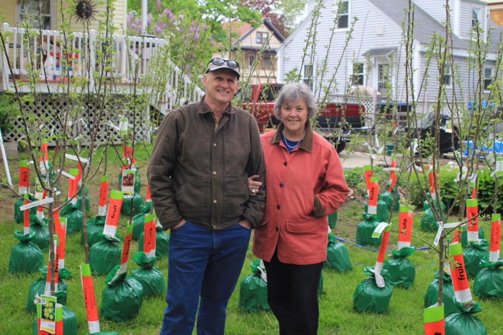 """Alastair Lough and Patricia Proulx-Lough with 49 fruit trees they had planted on Rosemont Avenue in Portland with the help of neighbors. Such efforts are chronicled in the new documentary """"Orchard Revolution."""""""