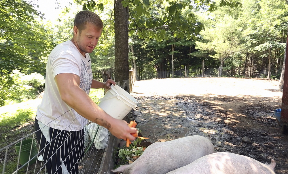 "Shane Scott feeds pigs at Angers Farm in West Newfield. He calls the therapeutic farm ""the most safest place I've been for a long, long time."""