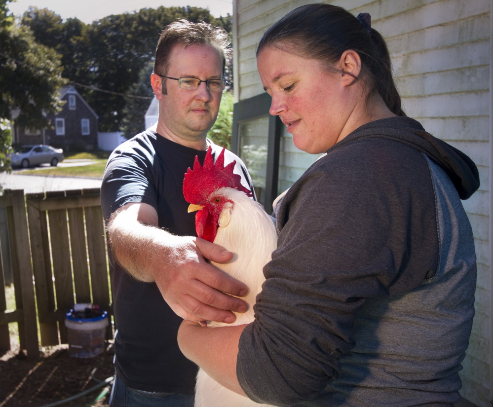 Patrick and Crystal Kennedy talk in their yard about the dispute with neighbors and the town of Cape Elizabeth over early morning crowing by their pet rooster, Elvis.