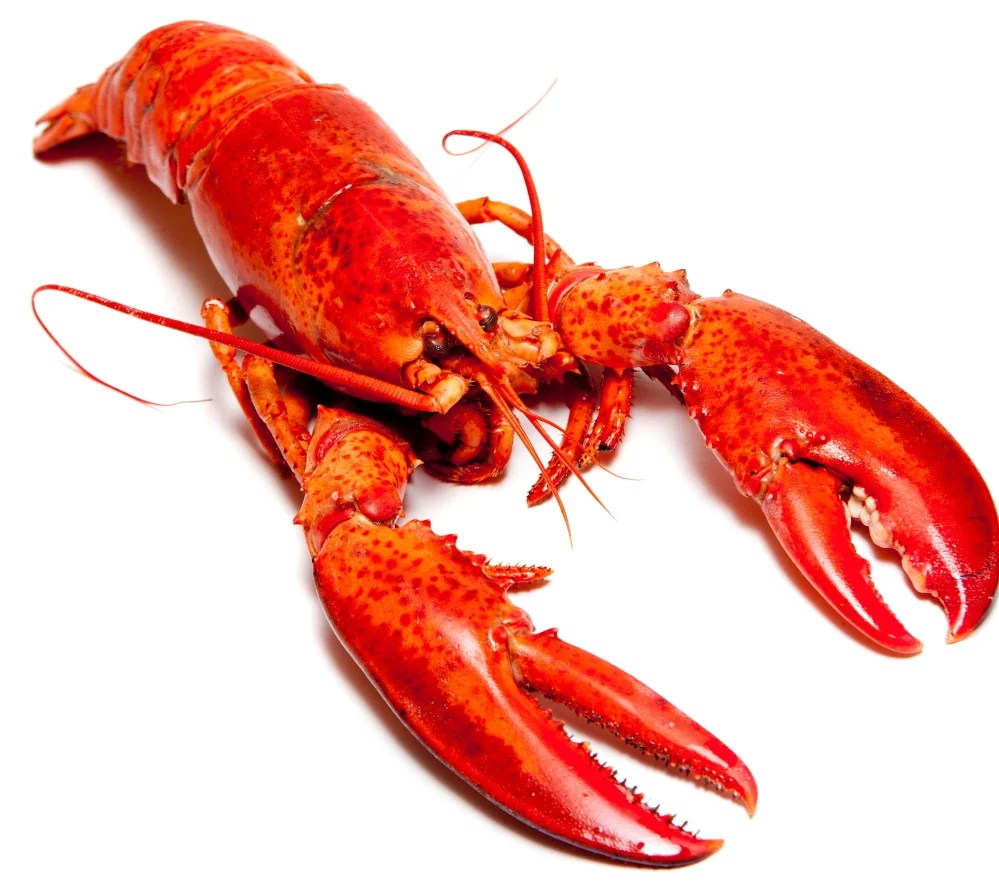 """Red is very much a symbol of status in China,"" says the spokeswoman for the Maine Lobster Marketing Collaborative, so lobster is  ""likely to be a center-of-the-plate option."""