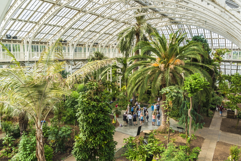 The Palm House at Kew, the Royal Botanic Gardens, in London holds tropical plants grouped by the continents they're from.