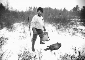 BRIAN COGILL prepares to pack up a beaver he trapped in Limington. Market slowdowns in big fur-buying countries like Russia, China and Korea are hurting prices, and recent warm winters haven't helped, said trappers and auctioneers.