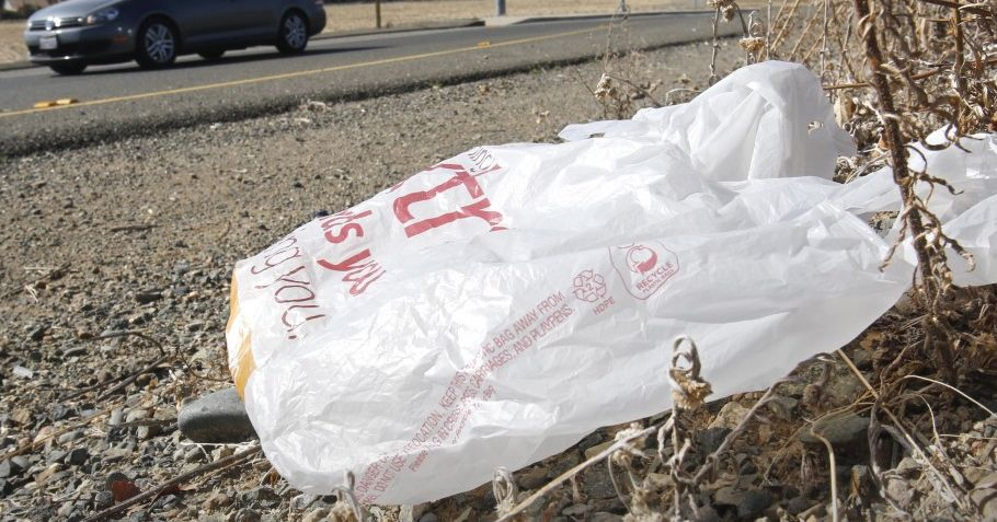 An informal survey conducted by the Freeport Ordinance Committee found 70 percent of 779 respondents support a ban on plastic shopping bags. The Associated Press