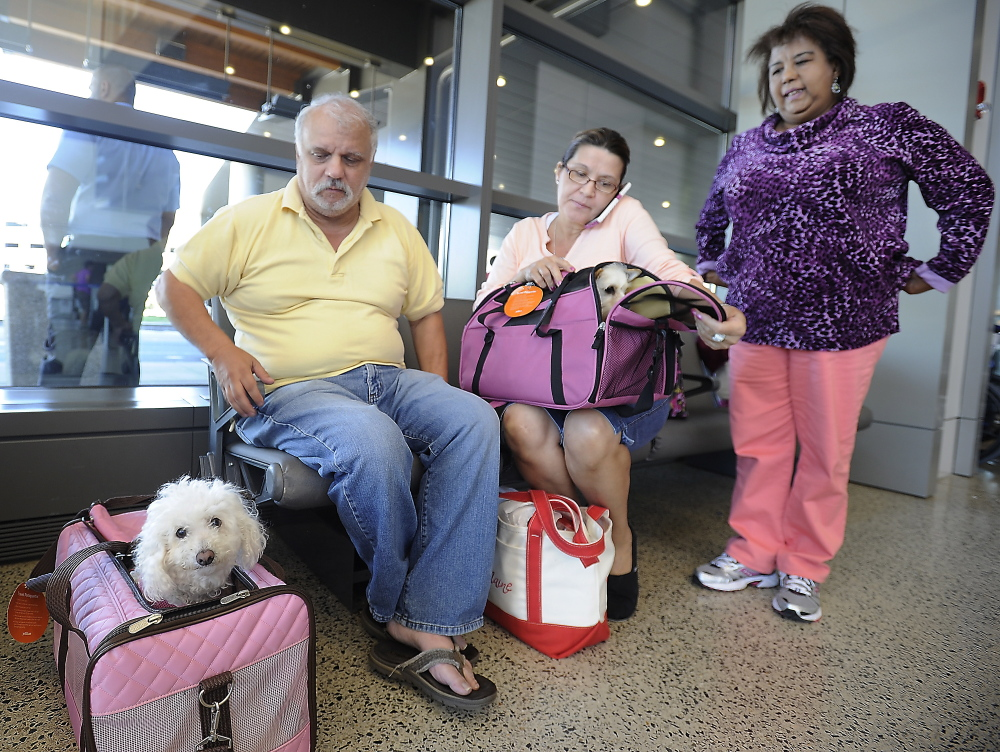 Dispute with JetBlue over dog carrier leaves travelers from