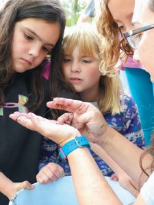 FROM LEFT, North Yarmouth Academy students Sadie Porch, Geneviere Vaillancourt, Nell Rohde and Southern Maine Community College teacher Megan McCuller examine an arthropod found in Merrymeeting Bay on Tuesday during a macroinvertebrates presentation. The fall educational event held annually at the Merrymeeting Bay Wildlife Management Area by Friends of Merrymeeting Bay drew 125 fourth-grade students from Bowdoinham, Bowdoin and Woolwich elementary schools and North Yarmouth Academy and 40 presenters, volunteers and chaperones.