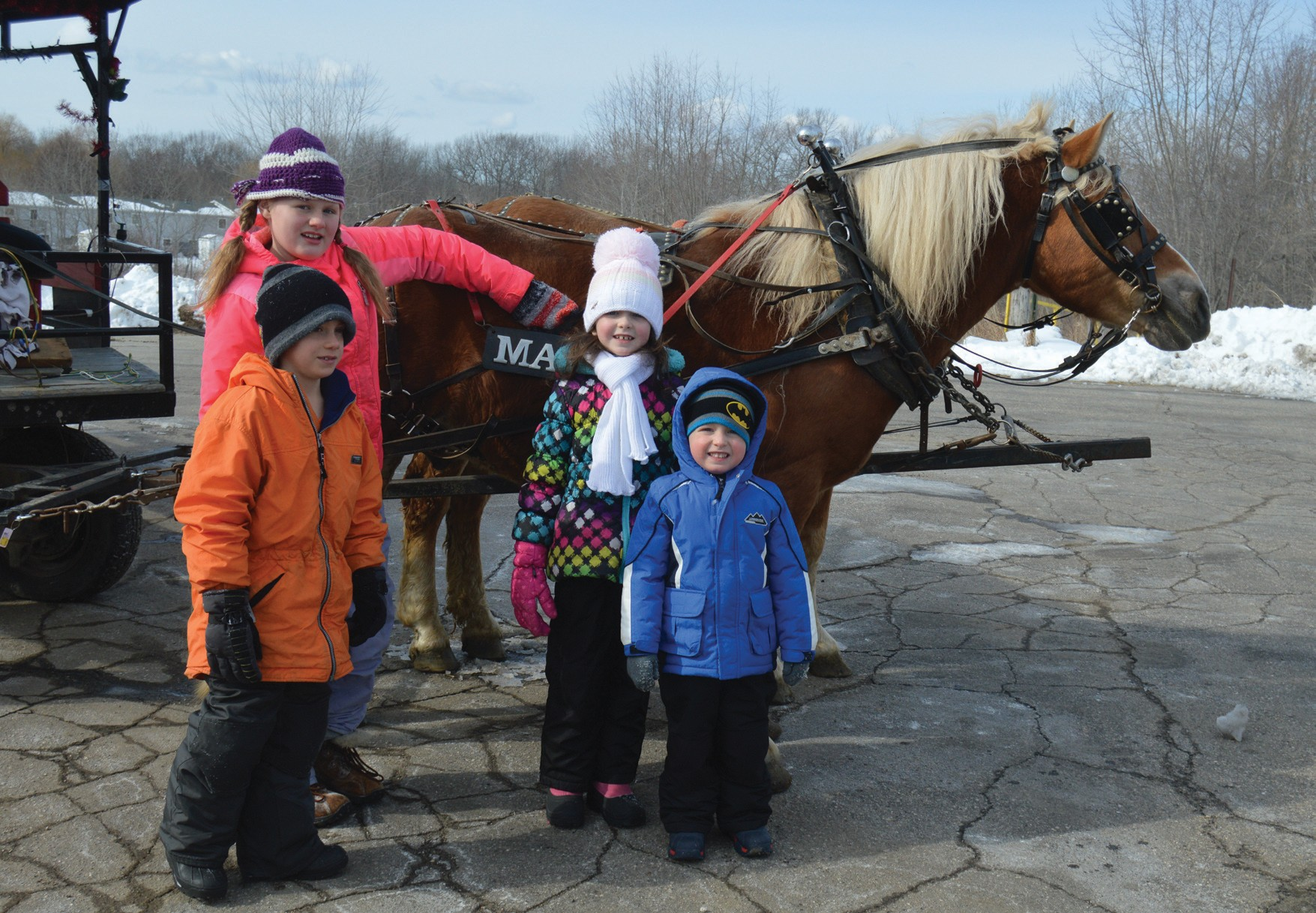 Children stand by the two horses that pulled carriages at Biddeford WinterFest at Rotary Park on Saturday.