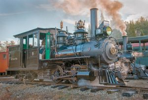THE WISCASSET, WATERVILLE AND FARMINGTON RAILWAY MUSEUM will hold its annual Easter Eggspress on Saturday. The day will feature steam train rides behind a newly restored Portland Company steam engine and Easter egg hunts. Trains depart Sheepscot Station hourly from noon to 3 p.m. The fare is $5, children under 3 ride for free. Sheepscot Station is located at 97 Cross Rd. in Alna. Go to wwfry.org or call (207) 882-4193 for more information.