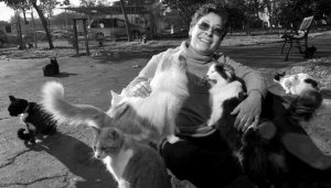 LYNEA LATTANZIO, founder of Cat House On The Kings, plays with some of her cats.