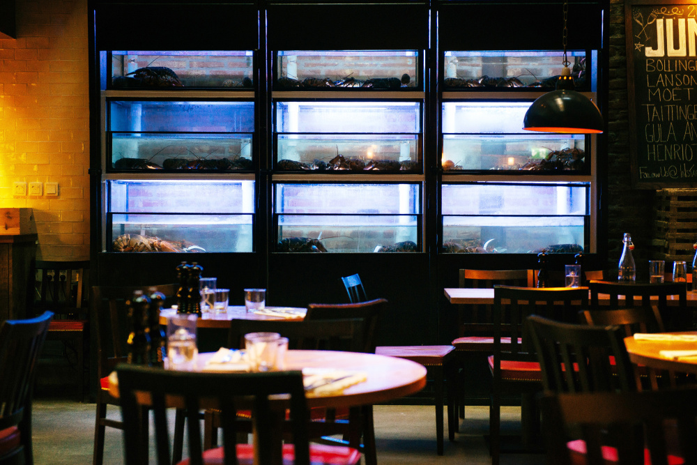 Tanks holding North American lobsters line the dining area at the Stockholm, Sweden, franchise of Burger & Lobster, a London-based restaurant chain that is reportedly the biggest importer of live lobster in Europe. Restaurateurs want regulators to consult them before instituting any ban on lobster imports.