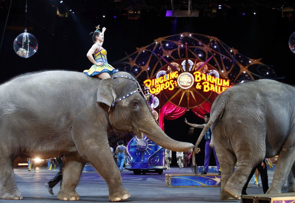The Ringling Bros. and Barnum & Bailey elephants perform in 2015.
