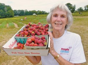 PEOPLE PLUS MEMBER BETTY BAVOR shows off her fresh-picked strawberries from Fairwinds Farm in Bowdoinham during the annual strawberry picking outing for the members of the People Plus Center. Picking brought back fond memories for Bavor as she recalled her first job picking strawberries as a child for 5-10 cents a quart, which she later sold door to door for 25 cents each. Bavor is a new member of the People Plus community, having relocated to the Brunswick/Topsham area last year. For more information on People Plus programs, visit peopleplusmaine.org.