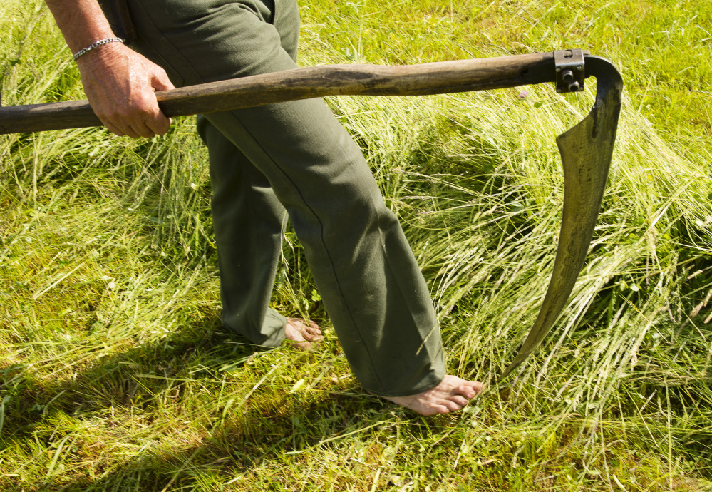 John McIntire of Unity walks barefoot while working with a group to scythe-cut a field at the Common Ground Fairgrounds.