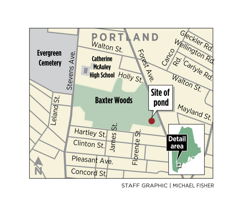 Portland plans stormwater retention pond in Baxter Woods