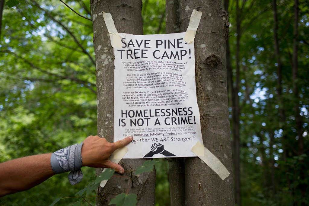 A Save Pine Tree Camp flier is posted prominently in the encampment on Aug. 18. Brianna Soukup/Staff Photographer