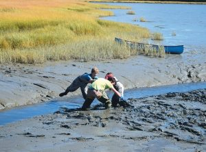 BHS TEACHER Andrew McCullough, in green shirt, comes to the aid of one of his students stuck in the mud off Wharton Point on Monday. The students were checking traps for green crabs as part of an aquaculture program.