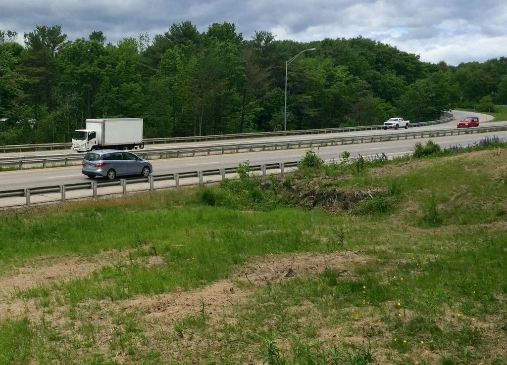 Trees to be planted in Freeport where DOT removed highway