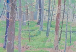 """""""MOSSY WOODS,"""" by Sarah Harvey, will be on view at Centre St Arts Gallery during an opening reception for a new exhibition Friday from 5-7 p.m., at 11 Centre St., Bath. Twenty Maine artist members work in a variety of styles and media, producing new work for every show. All work is original, with framed and matted pieces available, and sculpture in stone, clay and bronze. Admission is free and refreshments will be served. For more information, visit centrestartsgalleryllc.com."""