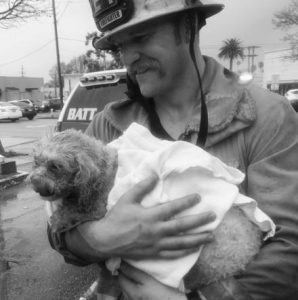 SANTA MONICA firefighter Andrew Klein holds Crystal Lamirande's dog, Nalu, in Santa Monica, California. Klein spent minutes giving mouth-to-snout resuscitation to the dog, who was pulled from a burning apartment. The pooch spent the next 24 hours in an oxygen chamber and is doing well.