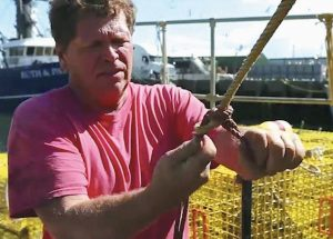 LOBSTERMAN TIM PETTIS works with his traps on the waterfront Thursday in Portland, in this image taken from video. Pettis said that he has seen the effects of climate change in the warming waters he works in and wishes President Donald Trump could feel the same. His comments came on the same day Trump pulled the U.S. out of the Paris climate agreement.