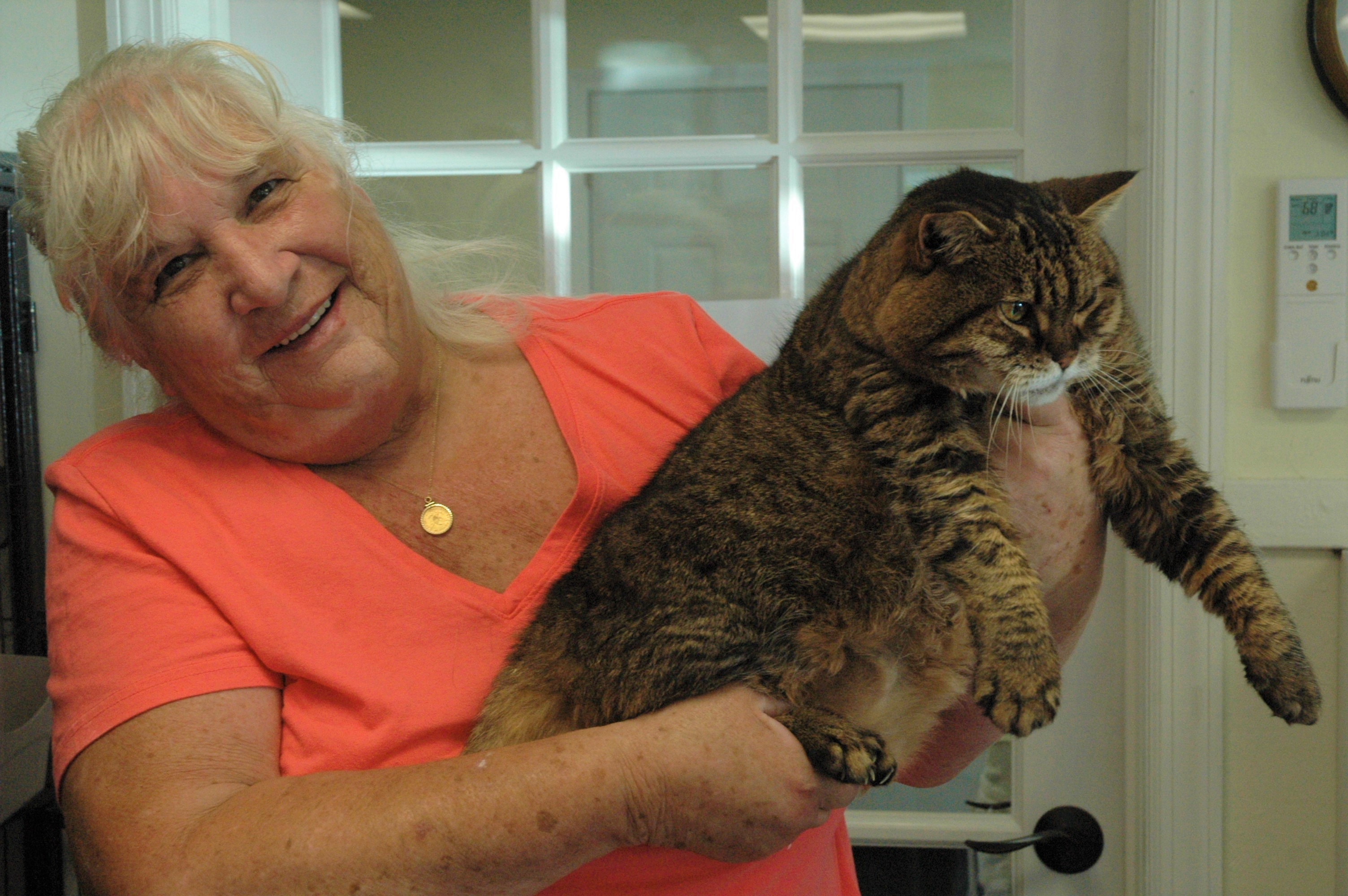 Another Chance Animal Rescue founder Marilyn Harley holds a cat named Ally at the Sanford facility on Saturday. LIZ GOTTHELF/Journal Tribune
