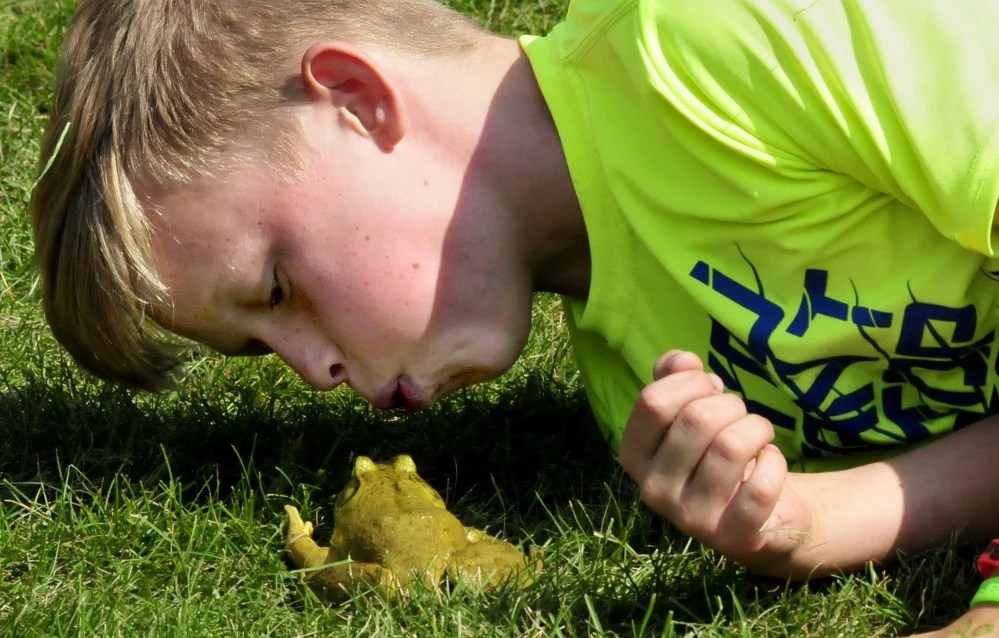 "Dylan Morrissey blows on his bullfrog ""Frogzilla"" to get the reluctant amphibian to move toward the ""finish"" circle during the frog competition Monday at the Oosoola Days event in Norridgewock."