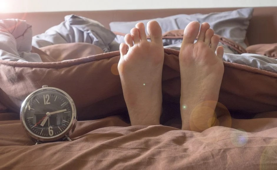 """When a doctor suggests that you go to bed and wake up at the same time every day, thank Jeffrey C. Hall of Cambridge, Maine, and his fellow researchers for uncovering the workings of our """"biological clock."""""""