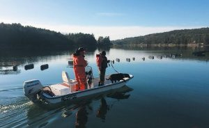 A WATER SEARCH for a 70-year-old missing West Bath man is conducted by members of the Maine Warden Service K9 team on Tuesday.