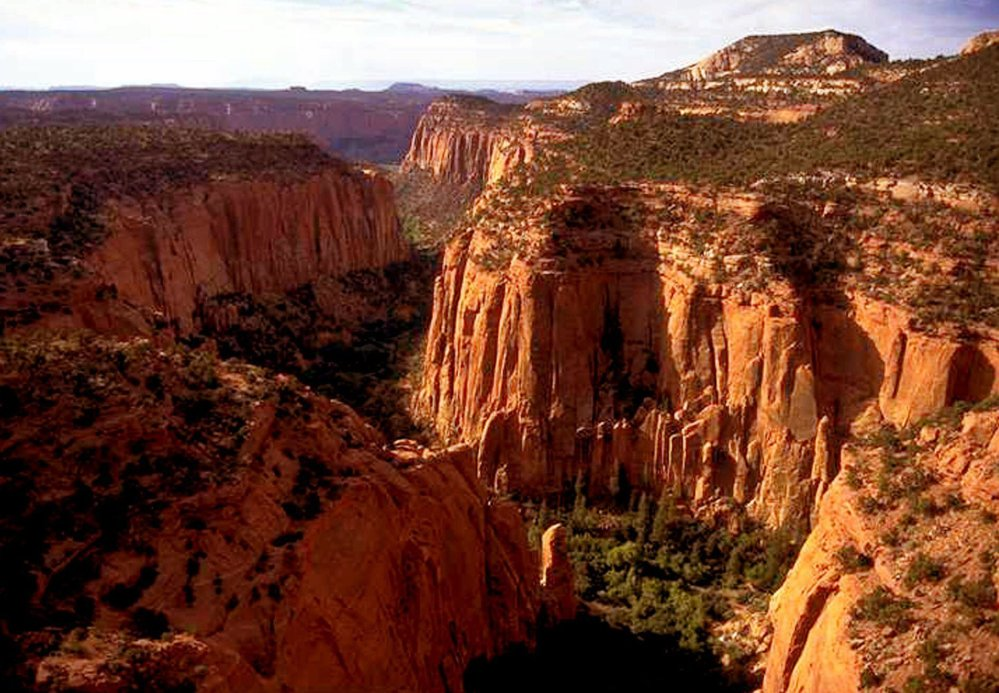 The Upper Gulch section of the Escalante Canyons within Utah's Grand Staircase-Escalante National Monument.