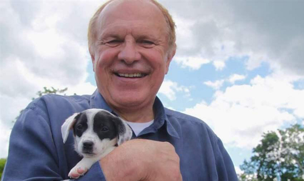 New Jersey Sen. Raymond Lesniak is sponsoring a bill to toughen laws against pet stores selling dogs or cats from corrupt breeders.