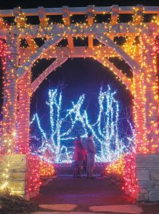 GARDENS AGLOW has returned for a third year at Coastal Maine Botanical Gardens, as seen in this photo taken Thursday. More than 500,000 LEDs light up the central gardens as part of this relatively new Midcoast holiday tradition. Gardens Aglow runs until Dec. 31, Thursdays through Sundays from 4-9 p.m., closed Christmas Eve.