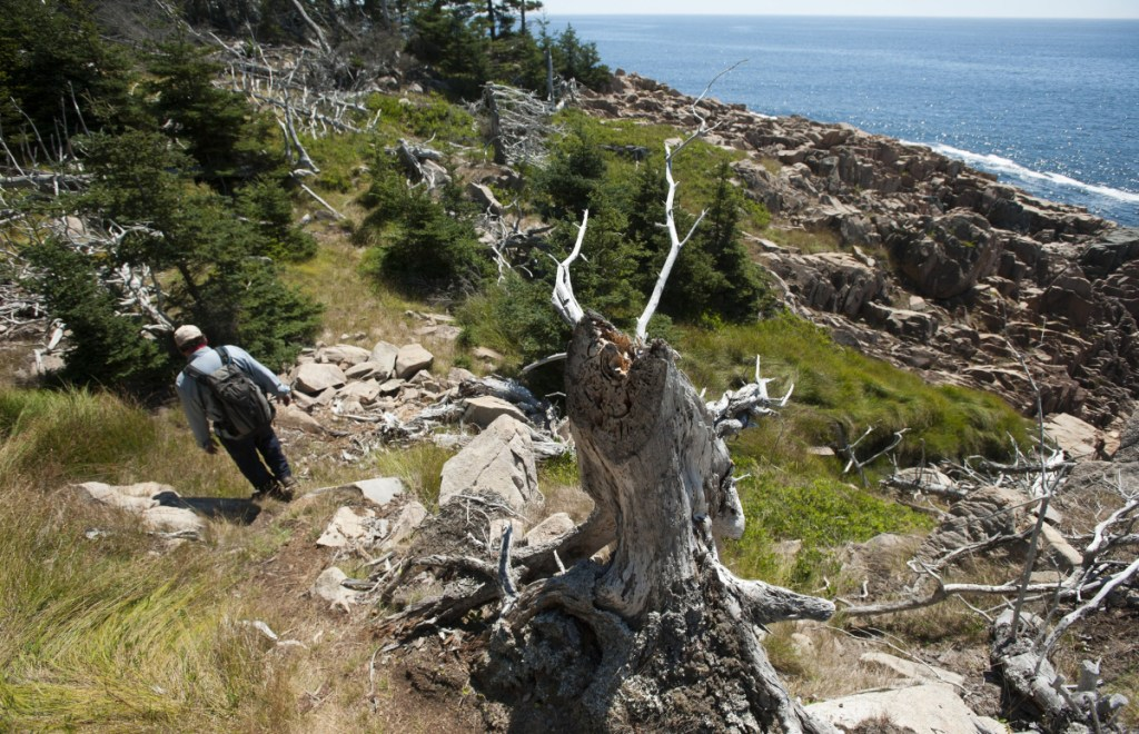 """A public trail in the Frenchboro Preserve in Hancock County is managed through the Maine Coast Heritage Trust. Its spokesman, Jeff Romano, notes that land trusts """"cover less than 1 percent"""" of tax-exempt property in Maine."""