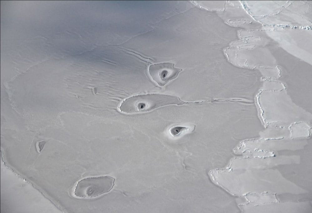 NASA's scientists have no idea what is causing three mysterious amoeba-shaped holes in a vast, unbroken sheet of thin Arctic sea ice.