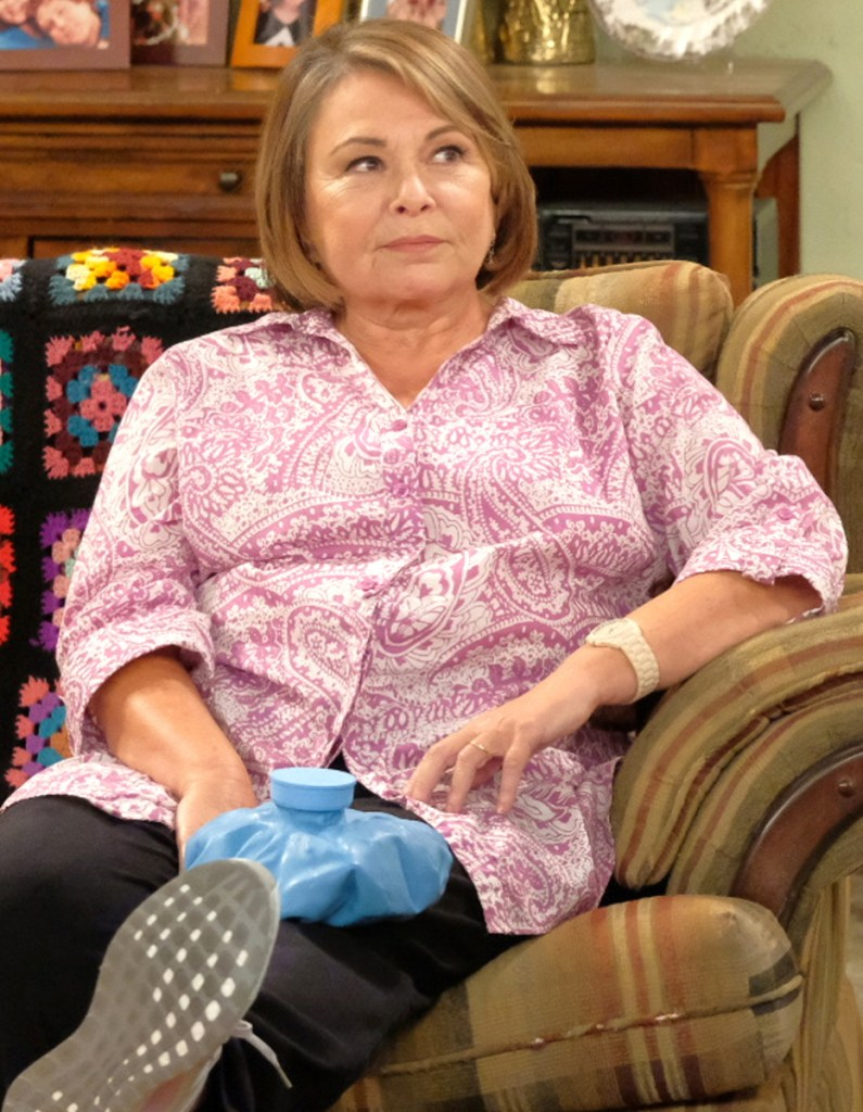 Roseanne Barr's name was submitted for an Emmy before her tweet controversy.