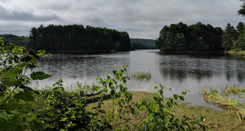 The view from the picnic meadow, which is about a mile from the northern entrance of the Androscoggin Riverlands State Park, is spectacular.