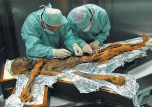 RESEARCHERS EXAMINE the body of a frozen hunter known as Oetzi the Iceman to sample his stomach contents in Bolzano, Italy in November 2010. MARCO SAMADELLI / EURAC / SOUTH TYROL MUSEUM OF ARCHAEOLOGY VIA AP