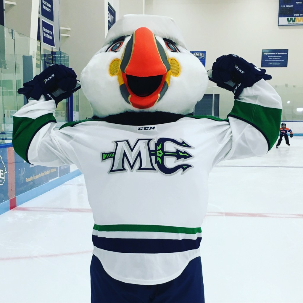 The Maine Mariners revealed Beacon the Puffin as their mascot on Wednesday.