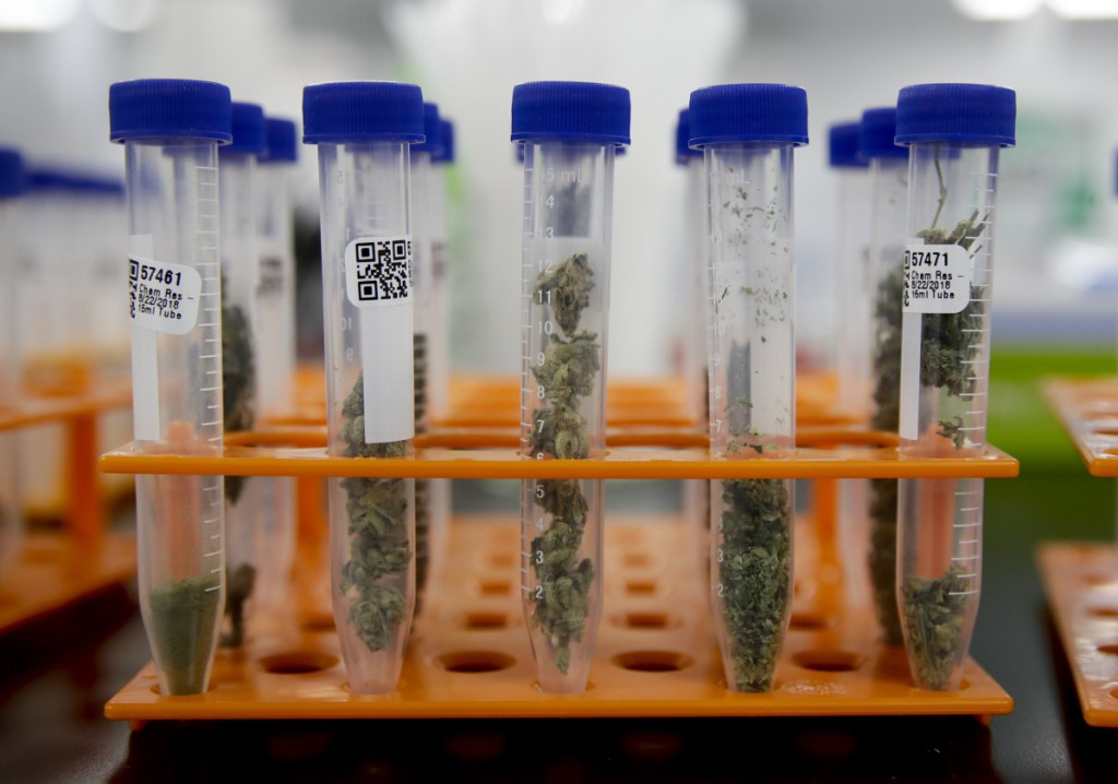 Regulators say the state's strict testing program is largely doing what it was designed to do: identify products that are in some way tainted and unsuitable for eating or smoking.