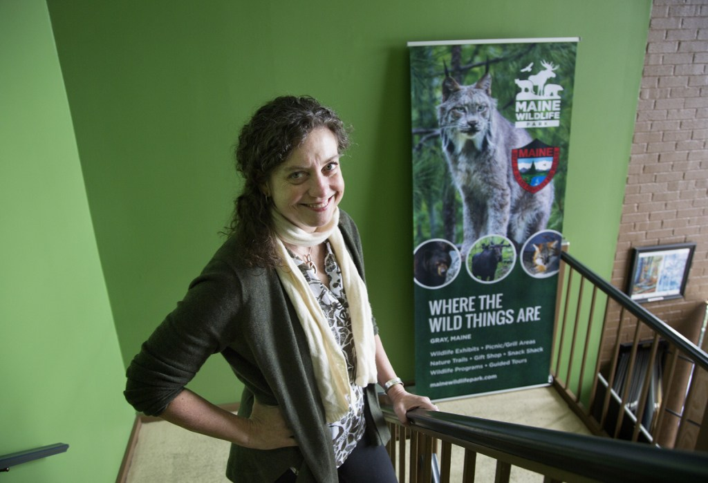 Judy Camuso is not a hunter, and acknowledges a gap between hunters and other outdoor enthusiasts. But she believes both groups have the same desires and, as the new Inland Fisheries and Wildlife head, she can bring them together.