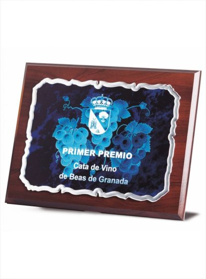 1717-Placa-Economico-Trofeo-Reconocimiento-Homenaje-Barata